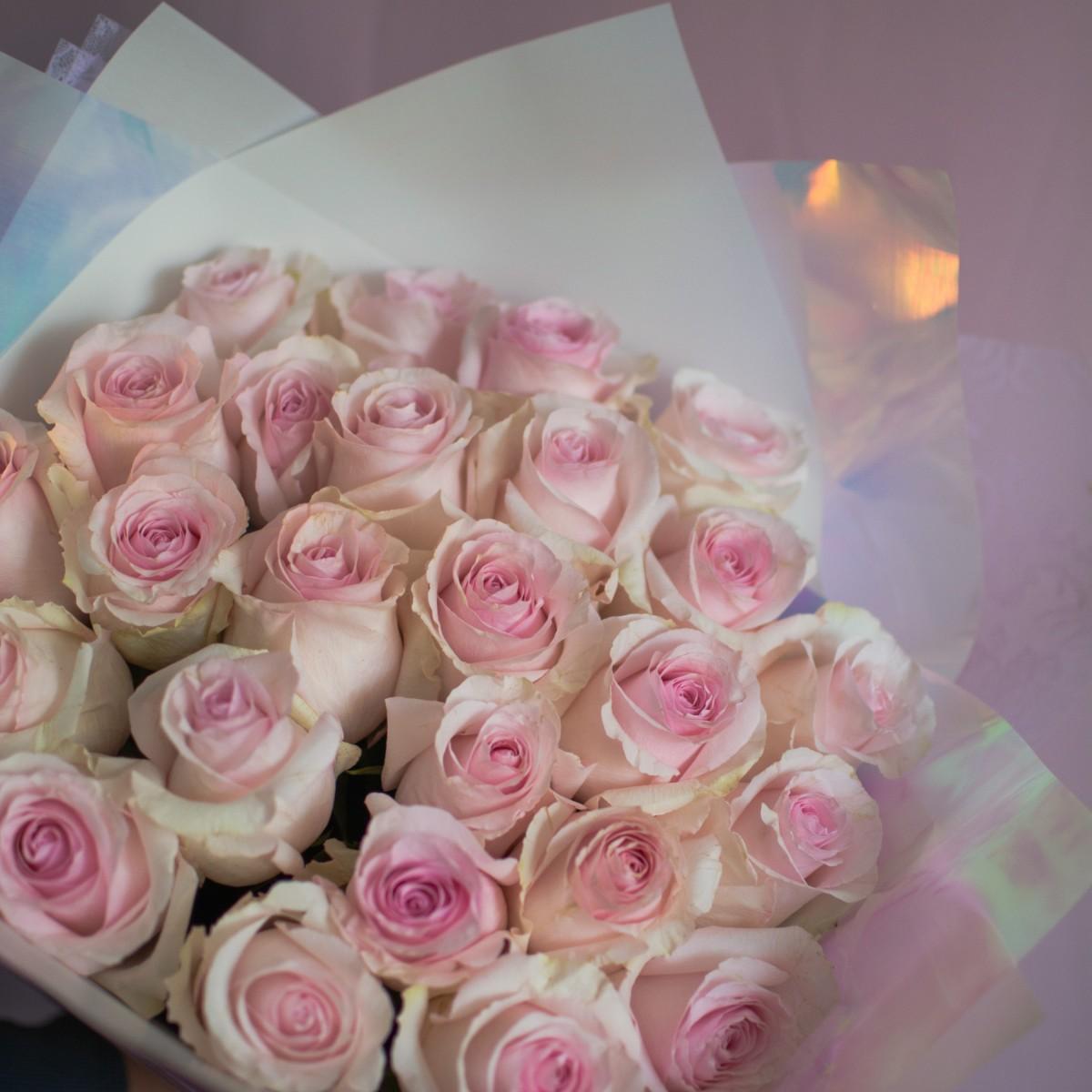 Розовые 25 роз 60 см
