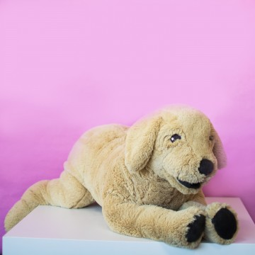 Собака 2