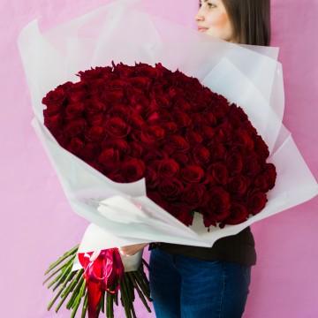Роза Explorer 101 роза 70 см