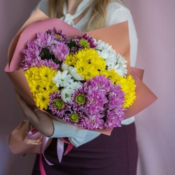 9 разноцветных хризантем