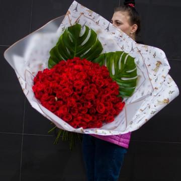 101 роза с монстерой